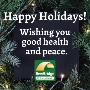 Make a tax-deductible donation to NewBridge as we bid adieu to 2020. Thank you!