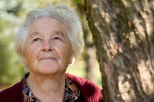 Two-thirds of people with Alzheimer's disease are women. Photo by Andrew Taylor/Pixabay